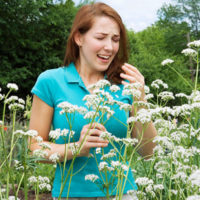 Ways-to-Prepare-for-Spring-Allergies-01-pg-full